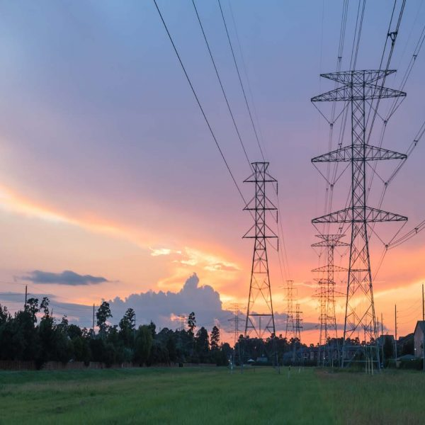 How does electricity reach our home?