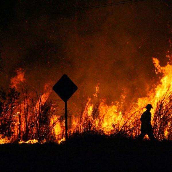 Australia's top utility providers are coming forward in support amid bushfire calamity